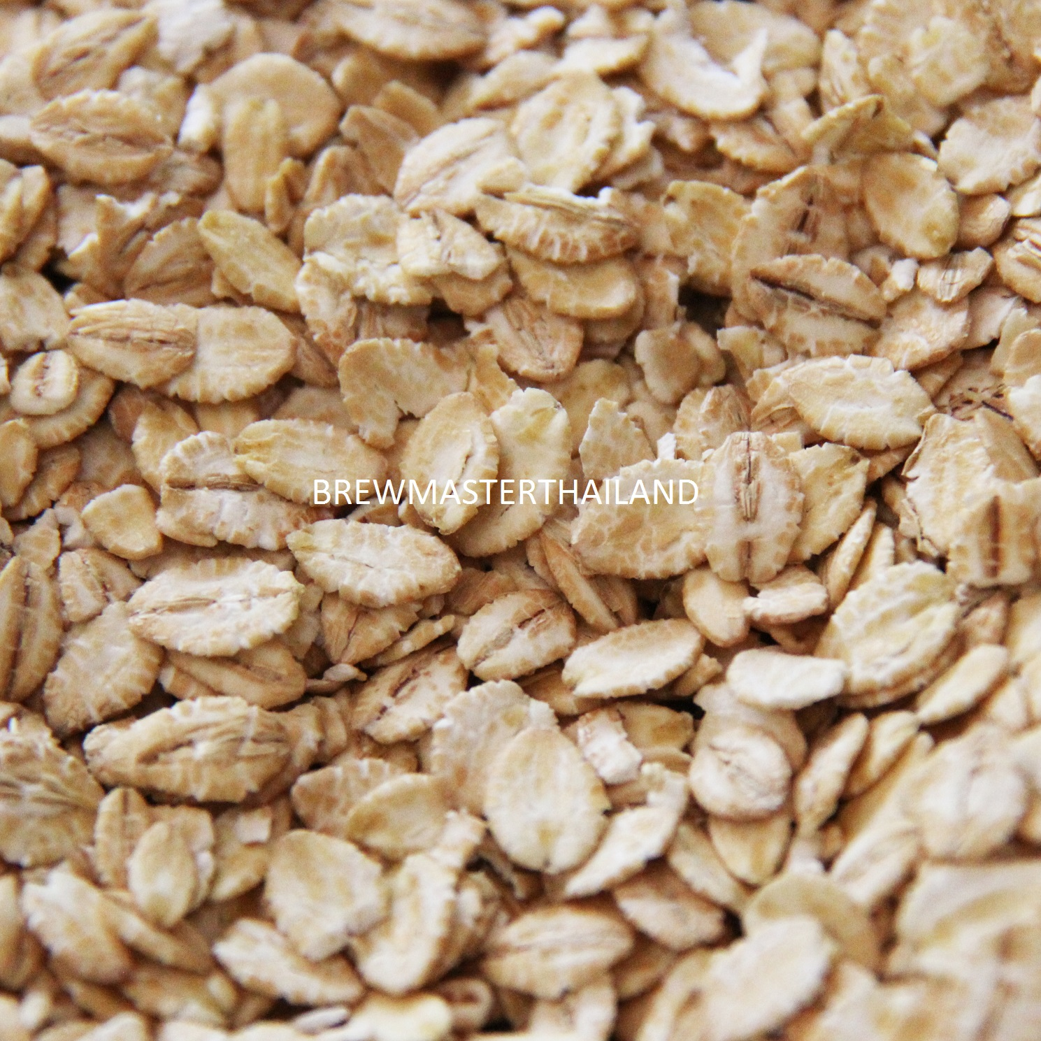 Flaked Barley (2lbs) - Product of Australia