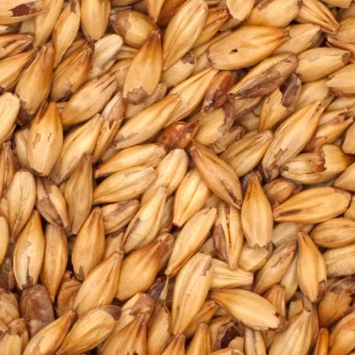 CARARED Malt - Weyermann (1 lbs)