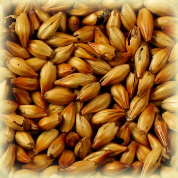 CARA RUBY Malt - Castle Malting (1 lbs)
