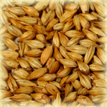 CARA BLOND Malt - Castle Malting (1 lbs)
