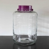 Glass Bubbler - 5 Gallon sealed lid