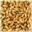 SMOKED Malt - Castle Malting (1 lbs) thumbnail 1