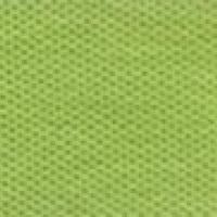 เสื้อ Polo TK Premium แขนสั้น ทรงตรง สีเขียวมะนาว